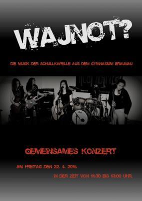 Wajnot míří koncertovat do Německa