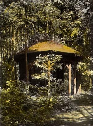 Mimoškolní činnost - úspěch v lesním krosu