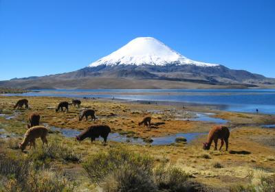 Petr Hejduk: Útok na dvě šestitisícovky v Chile