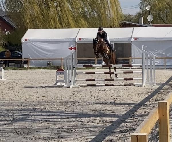 Jezdecký sport: Nela Havelková - Výborné 6.místo