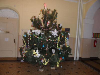 Vánoční stromek - tradice od 16.století